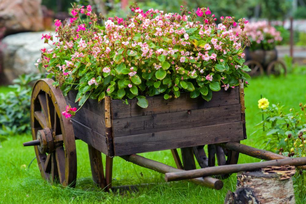 PREPARE Magazine Designing Your Garden on a Budget - designing your garden