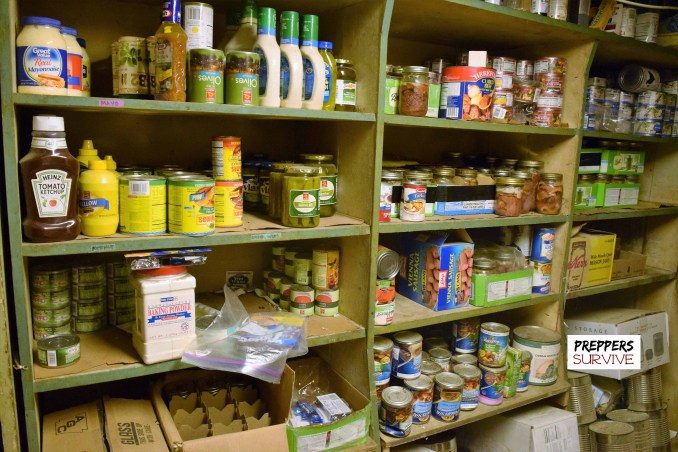 Prepper's pantries - Dust
