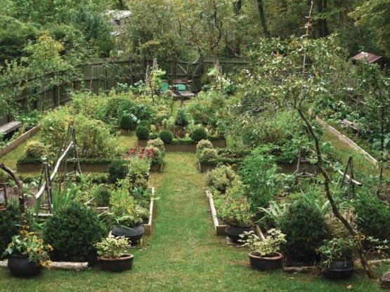 highcote-kitchen-garden-recreate-the-kitchen-gardens-of-the-past