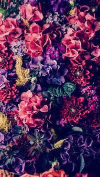 The 10 Prettiest iPhone 7 Plus Wallpapers of 2016 | Preppy ...