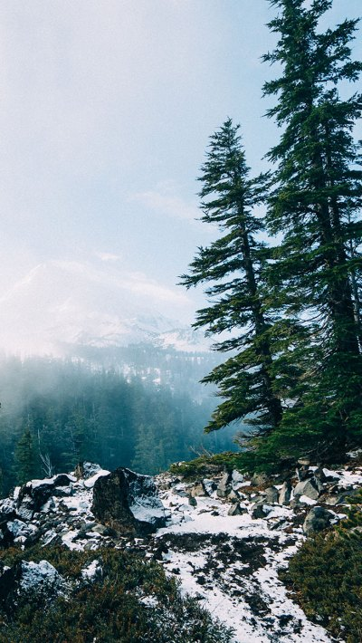 16 Adventurous Forest & Mountain iPhone 7 Wallpapers | Preppy Wallpapers