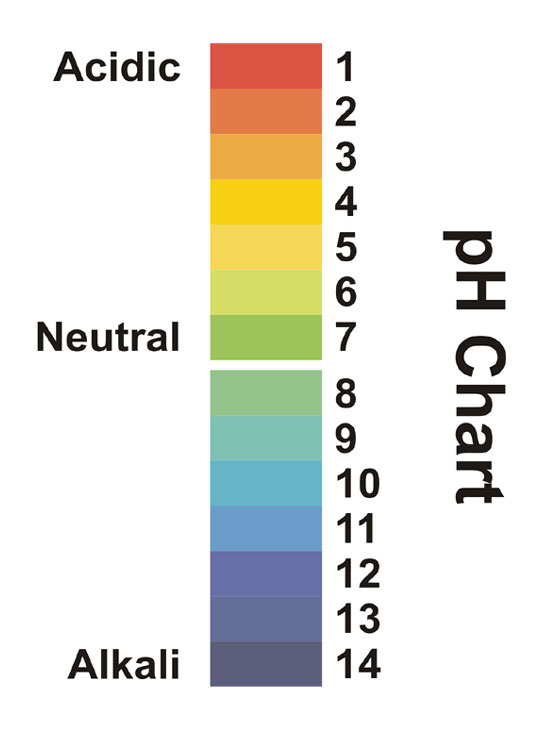 pH Chart - Chemistry - Printer Friendly Page - Preproomorg - ph chart