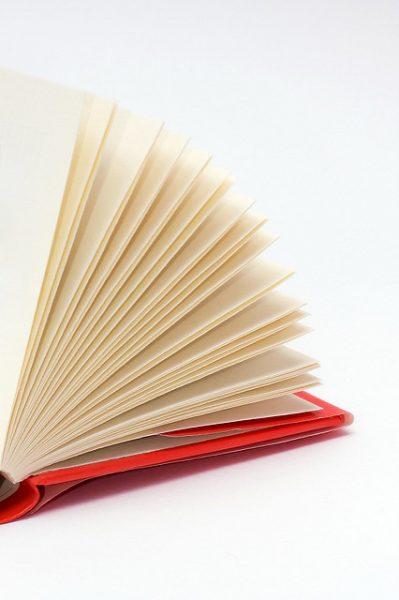 4 Successful Graduate School Resume and CV Examples \u2022 PrepScholar GRE