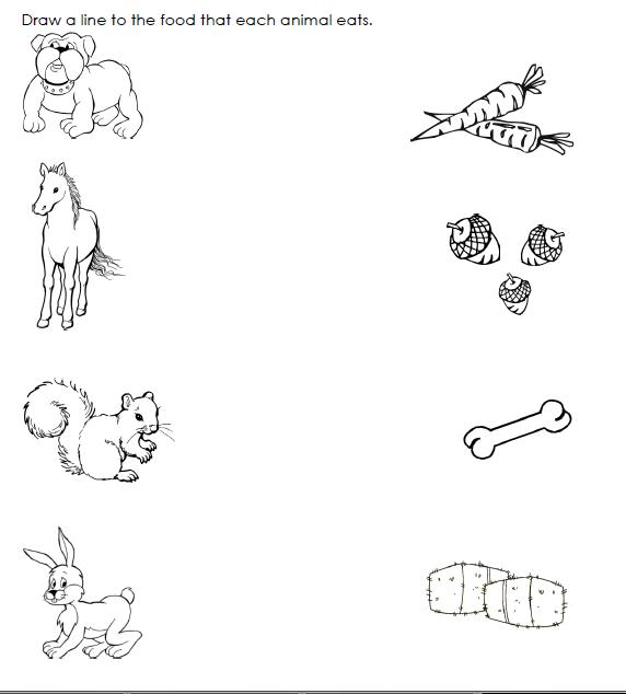 Worksheet for mom baby animal matching Crafts and Worksheets for