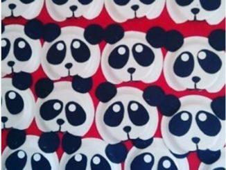 4 Paper Plate ... & Panda Paper Plates - Castrophotos