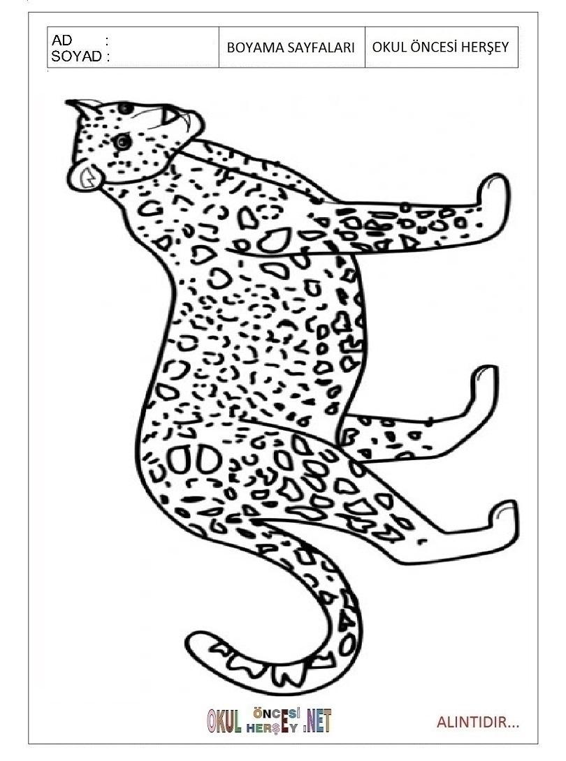 jaguar birmingham phone number