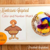 Turkey Color and Number Match Montessori Activity