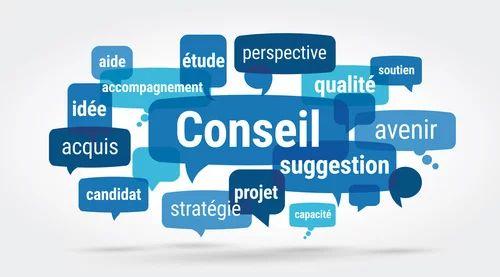 phrase accroche cv conseiller en insertion professionnelle