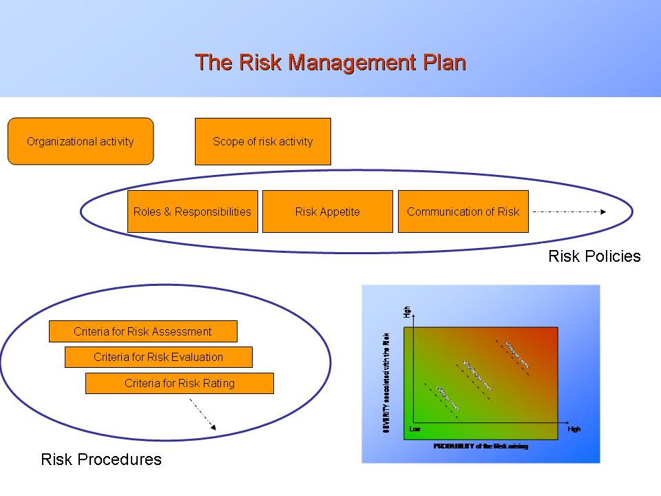 Risk Management Plan Strategic and Operational acceptance of risk
