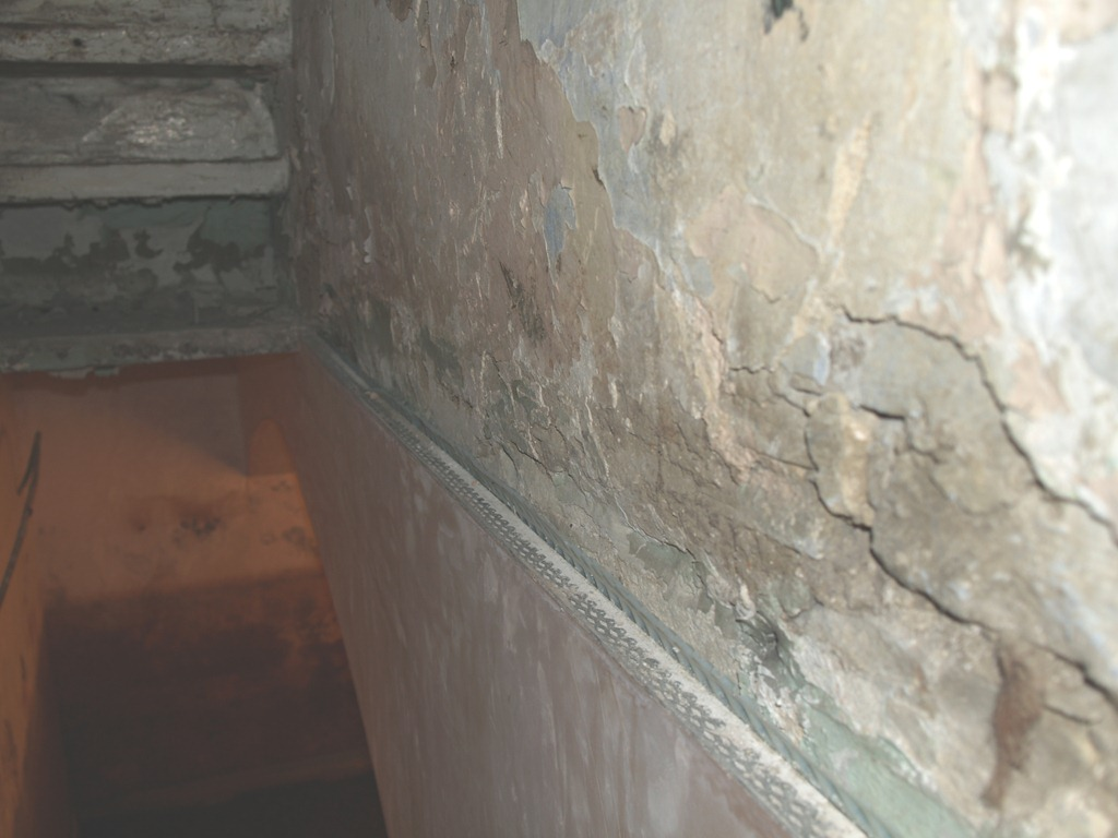 Black Mold Under Wallpaper How To Spot And Control Condensation And Mould Growth