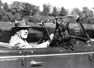 Fala, primeiro-cão da era FDR