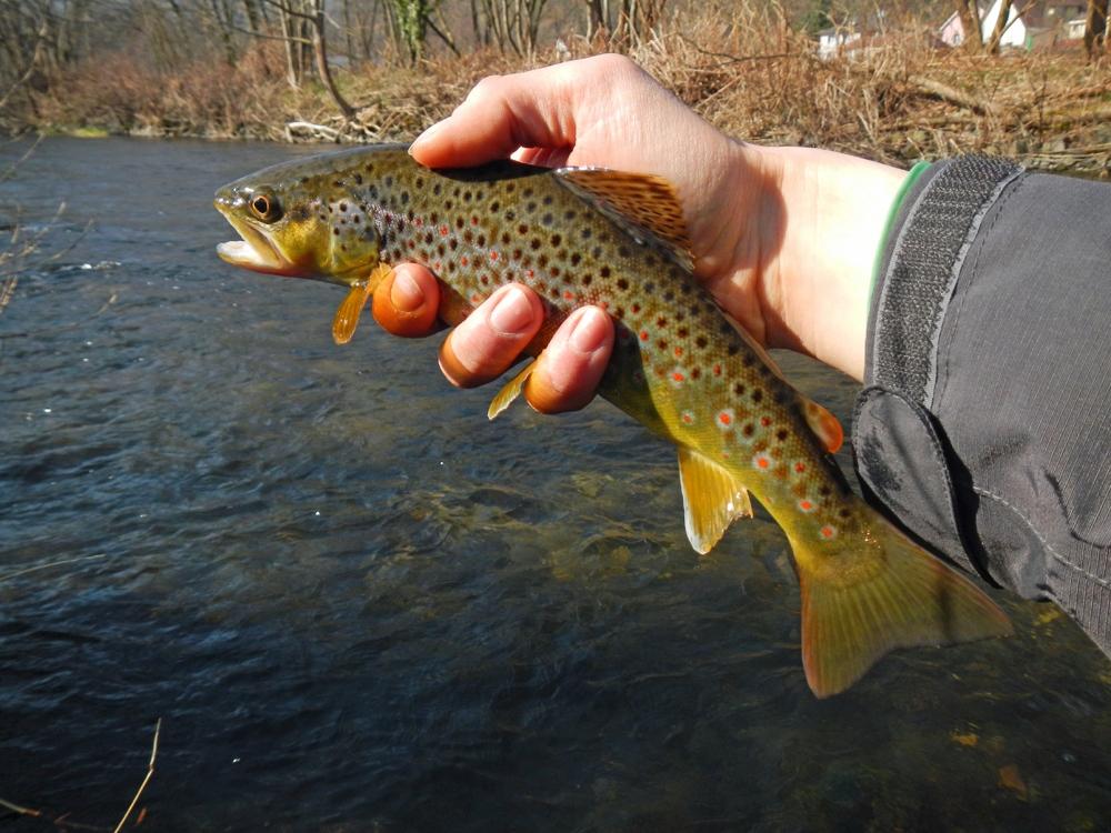 La pêche du cordage faire par les mains i