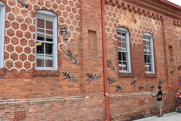 """Muralist Matt Willey and his project, """"The Good of the Hive"""""""