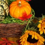 Guest Post: How to Make Your Thanksgiving Table Stand Out