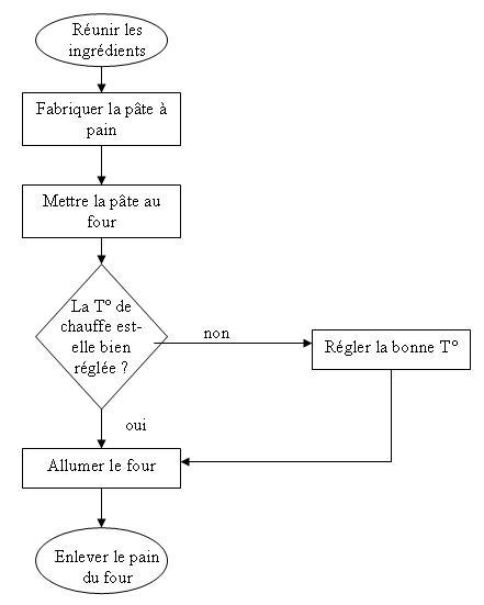 exemple cv logigramme