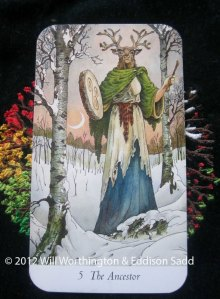 The wise Ancestor from the Wildwood Tarot hints that I need to isolate myself