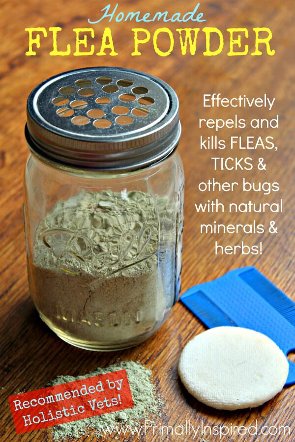 Homemade Flea Powder - Primally Inspired