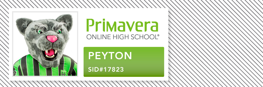 Your Guide to Student ID Cards Primavera Online High School