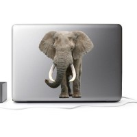 Elephant Wall Mural Decal - Animal Wall Decal Murals ...