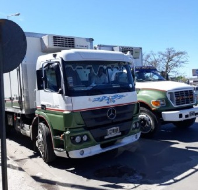 Camiones colectora