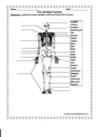 7 Best Images of Printable Biology Worksheets