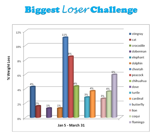 Weight Loss Chart Spreadsheet - biggest loser spreadsheet template