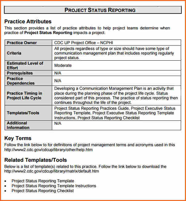 Project Report Template Doc printable schedule template