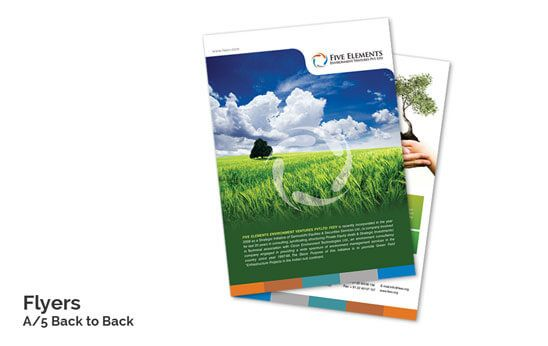 Attractive Flyer Design  Printing Online with Flyer Templates - web flyer template