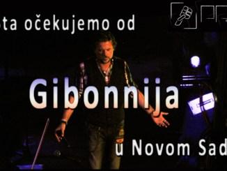 Gibo3