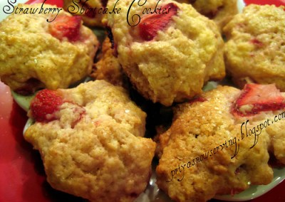 Indus Ladies E Recipe Book & Strawberry Shortcake Cookies