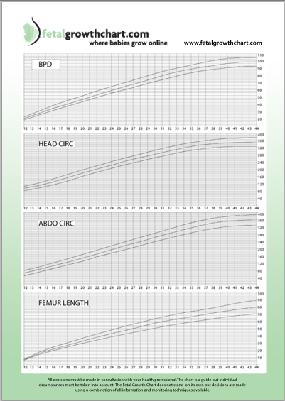 Fetal Growth Chart Gives Pregnant Women The Reassurance They Desire