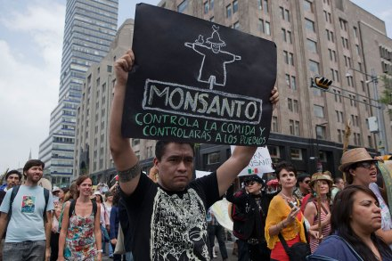Activistas protestan contra Monsanto en la Ciudad de México. Foto: Octavio Gómez