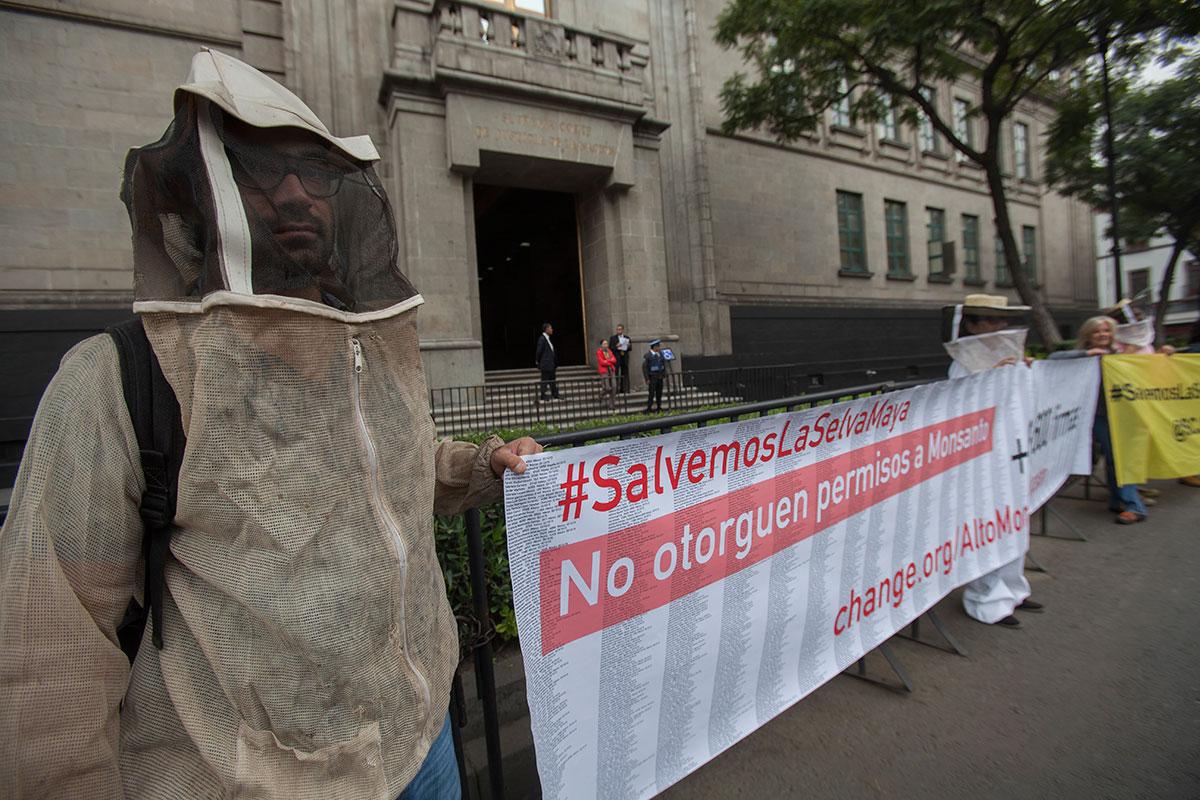 Activistas protestan en la Corte contra Monsanto. Foto: Octavio Gómez