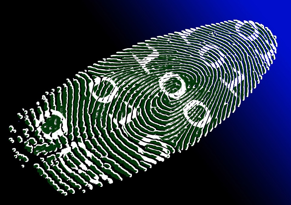 Car Biometric Identity