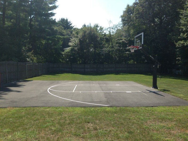 Large Of Pro Dunk Hoops