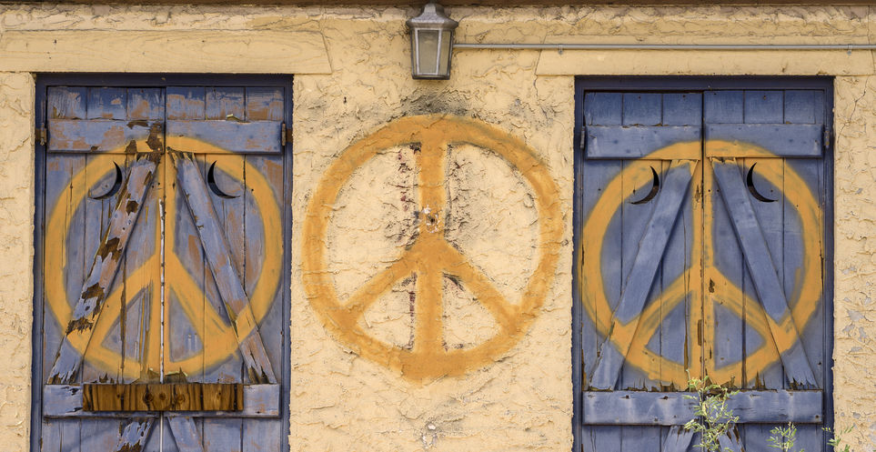 15 Fellowships for Peace Activists, Scholars and Students ProFellow