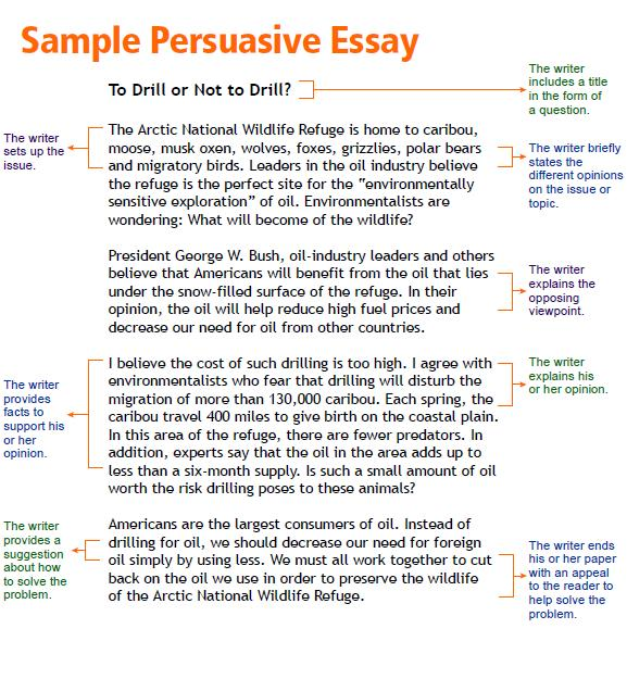 a good hook for a persuasive essay