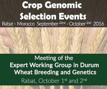 Meeting of the Expert Working Group in Durum Wheat Breeding and Genetics