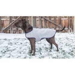 Stylish Dog Coat Sitting Dog Coat Standing Dog Coat Professor Pincushion Dog Coat Pattern Legs Dog Coat Patterns Free Download bark post Dog Coat Pattern