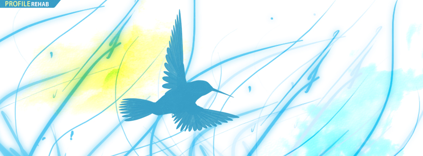 Romantic Quotes Wallpaper For Facebook Hummingbird Facebook Cover