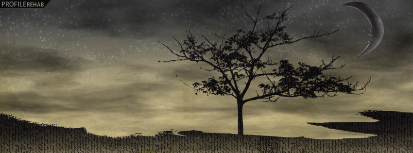 Sarcastic Wallpaper Quotes Artistic Tree Amp Moon Facebook Cover