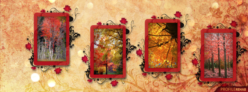 Full Screen Desktop Fall Leaves Wallpaper Fall Leaves Cover Photos For Facebook Autumn Tree Pictures