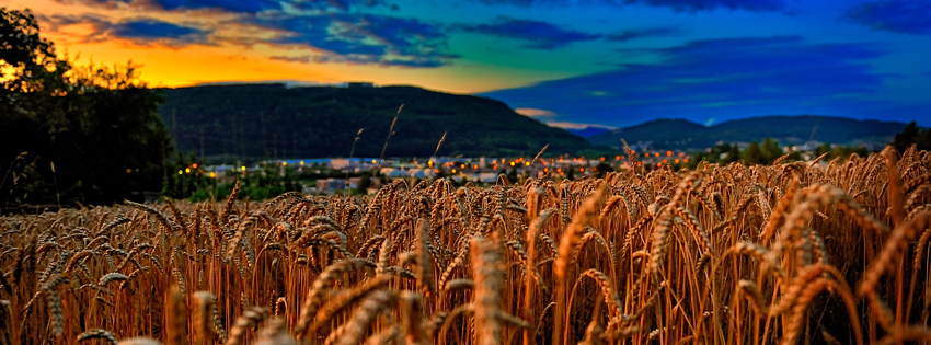 Pretty Fall Wallpapers Switzerland Wheat Field Facebook Cover