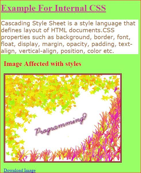 Internal Style Sheet with an Example