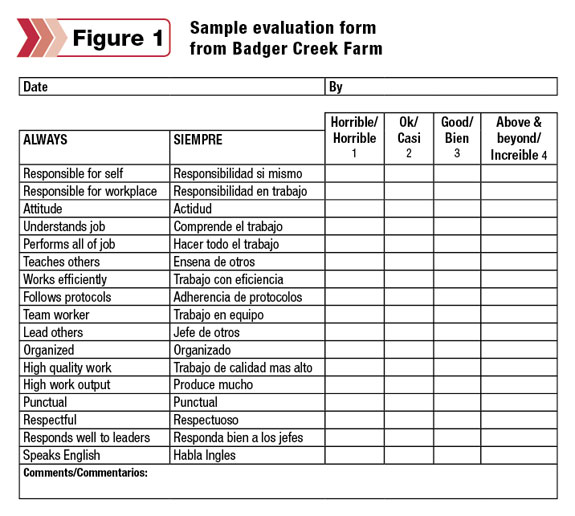 worker evaluation forms
