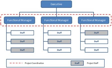 Organizational Structure Types for Project Managers