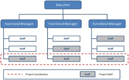 Organizational Structure Types for Project Managers - matrix organizational structure