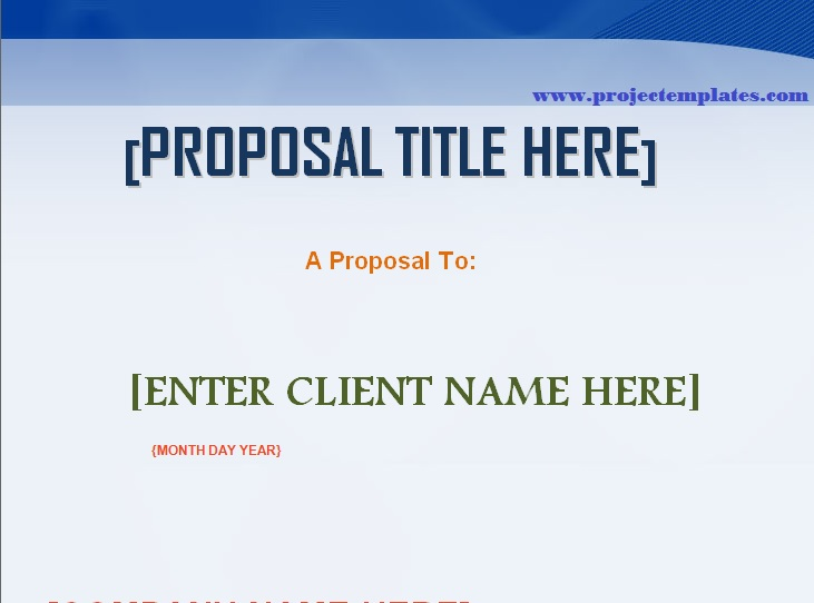 Professional Proposal Template Word Projectemplates - professional proposal template