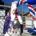Mt. Tamalpais High School in Marin, California raises awareness and funds at school football game