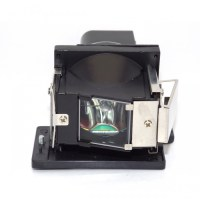 Lg BL-FS200C Replacement Lamp With Housing